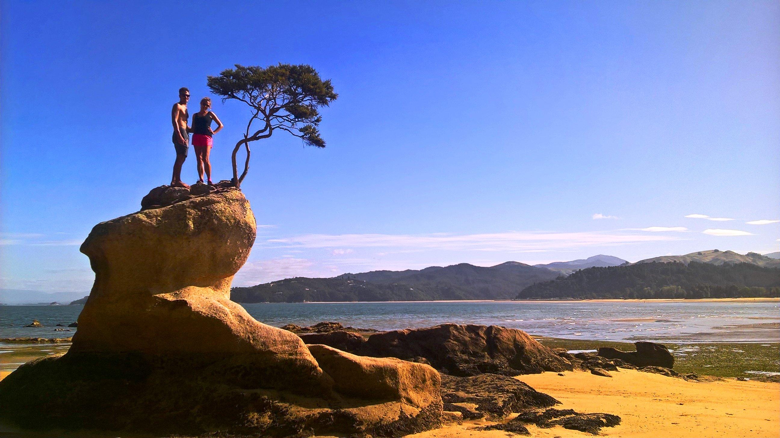 Hiking in Abel Tasman National Park